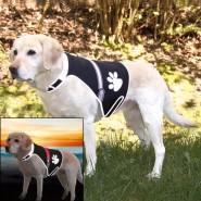 Flash Sicherheitsweste für Hunde