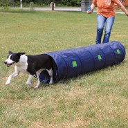 Dog Activity Agility Tunnel, 40 cm/2 m, blau