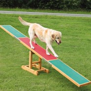 Dog Activity Agility Wippe, 300x54x34 cm, bis 80 kg
