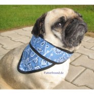 Aqua Coolkeeper Cooling Pet Bandana Blue Western