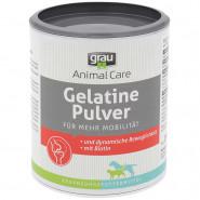 Grau Gelatine Pulver