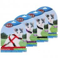 Kätzchengarnitur, Kätzchen/kleine Katzen, Nylon