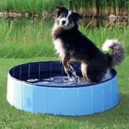 Hundepool, hellblau/blau