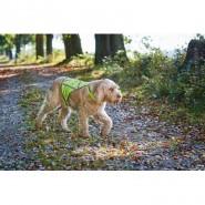 Hunter Warnweste für Hunde