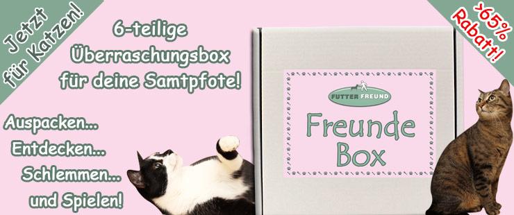 Futterfreund Freunde Box Katze