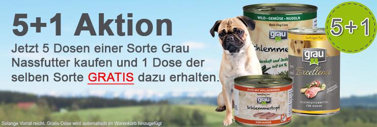 Grau 5+1 Hund