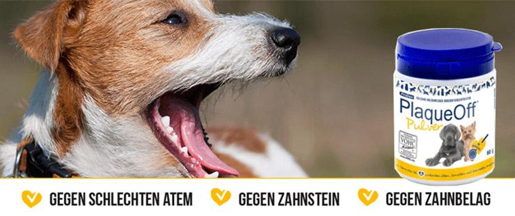 ProDen PlaqueOff Hund
