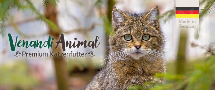 Venandi Animal Katze