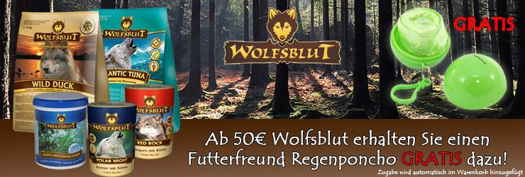 Wolfsblut+Regenponcho