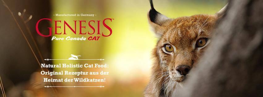 Genesis Katzenfutter