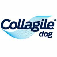 Collagile Dog - Unterstützung für Gelenke